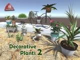 Decorative Plants 2