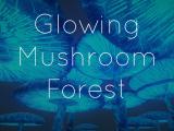 Glowing Mushroom Forest - Unity Asset