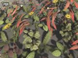 PBR Plant Pack Volume 2