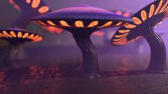 Fantasy Mushrooms Collection - Unity Asset