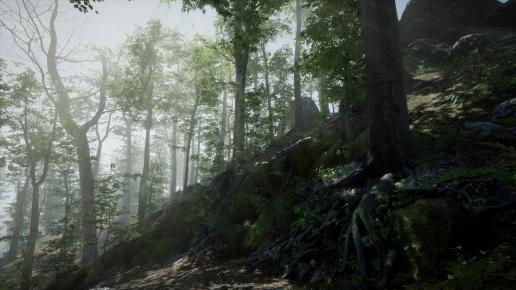 Forest - Environment Set