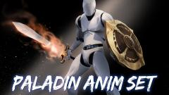 Paladin Anim Set - Unity Asset