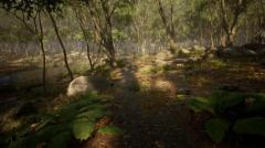 Leaf Tree Forest Biome - Unity Asset